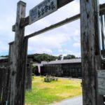 アクアシアン(福岡県遠賀郡芦屋町)と「とと市場」